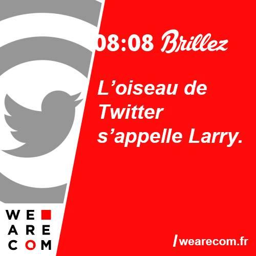 brillez - savoir utile - twitter - L oiseau de Twitter s appelle Larry- communication